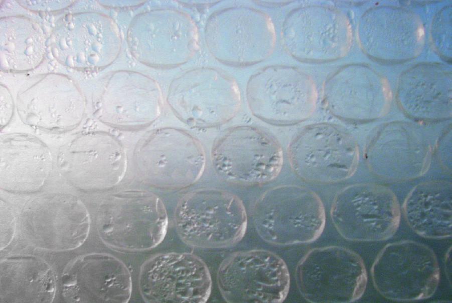 Sauerstoff im teich messen o2 sauerstoff im teich for Fischteich algen entfernen