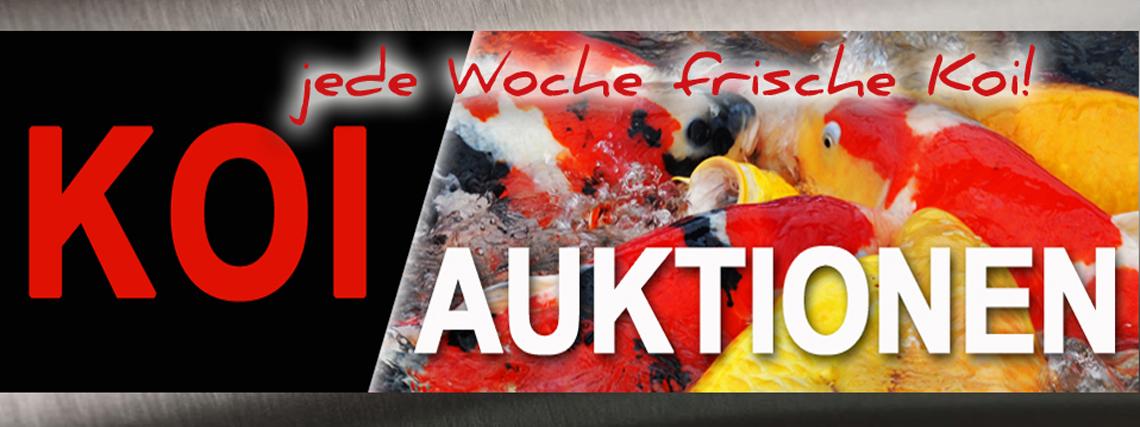 Jetzt gibt´s wieder frische Fische!!!!!!