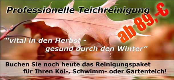 Teichreinigung_Pflege Herbst