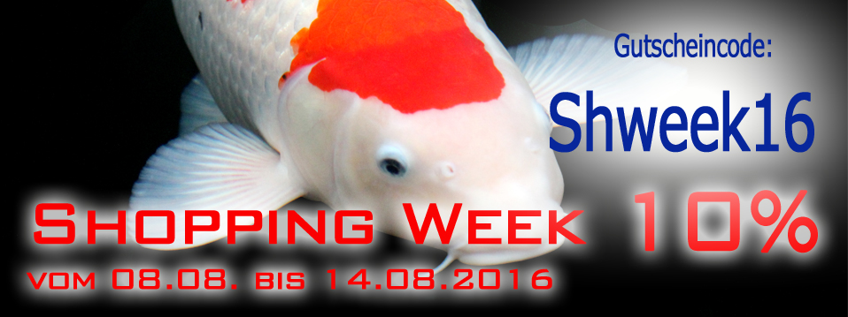 Shopping Week statt Sommerfest